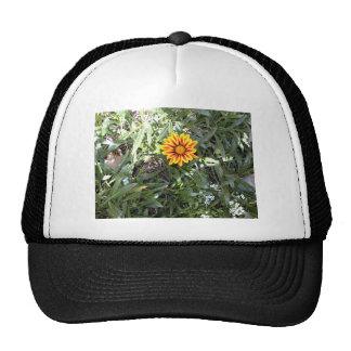 Sunny Red and Yellow Blossom Cap