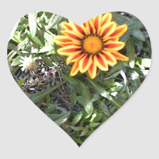 Sunny Red and Yellow Blossom Heart Sticker