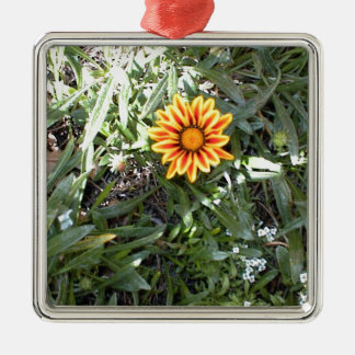 Sunny Red and Yellow Blossom Silver-Colored Square Decoration