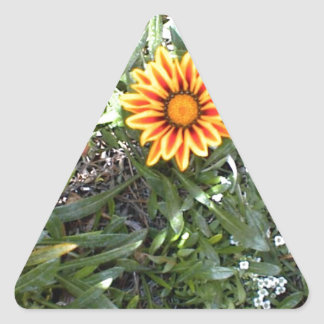 Sunny Red and Yellow Blossom Triangle Sticker