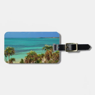 Sunny skies, aqua view luggage tag