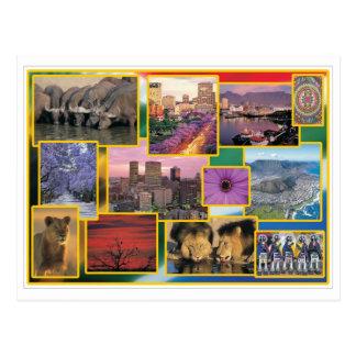 Sunny South Africa Postcard