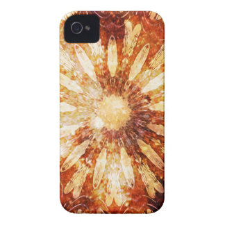 Sunny Star Flower Warm Brown Orange Colors iPhone 4 Cover