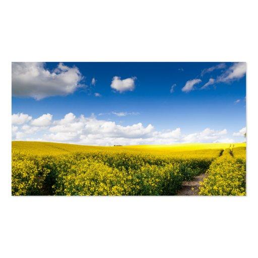 Sunny summer landscape business card templates