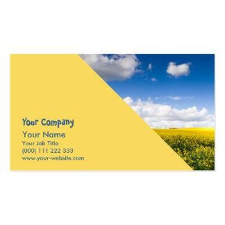 Sunny summer landscape pack of standard business cards