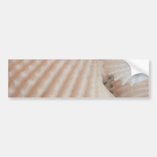 Sunny Summer Seashells. Romantic, Exotic Tropical Bumper Sticker