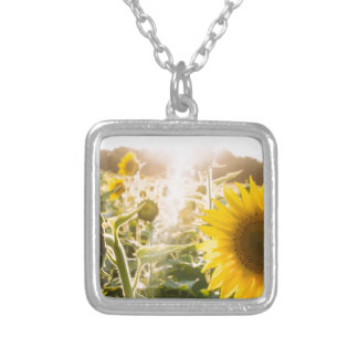 Sunny Sunflower Field Silver Plated Necklace