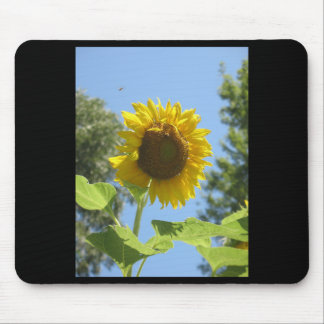 Sunny Sunflower Mouse Pad