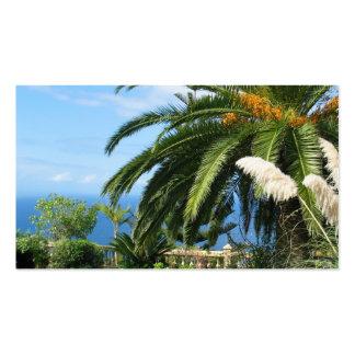 sunny Tenerife Business Cards