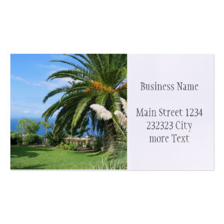 sunny Tenerife Pack Of Standard Business Cards