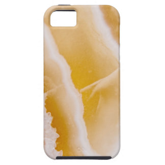 Sunny Yellow Agate iPhone 5 Covers