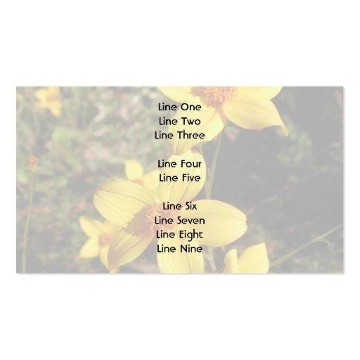 Sunny Yellow Flowers. Bidens. Business Card