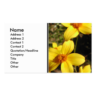 Sunny Yellow Flowers. Bidens. Pack Of Standard Business Cards