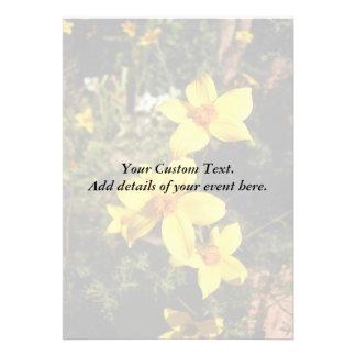 Sunny Yellow Flowers. Bidens. Custom Announcement
