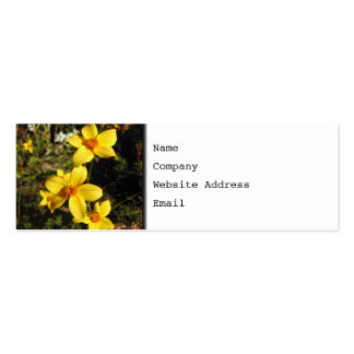 Sunny Yellow Flowers. Bidens. Pack Of Skinny Business Cards