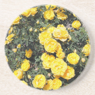 Sunny Yellow Rose Flowers Bus Coaster