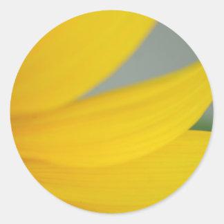 Sunny's Petals sticker