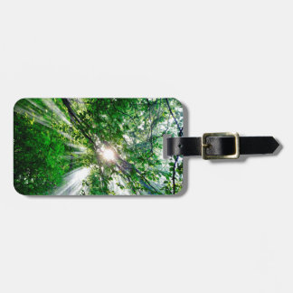 Sunrays Luggage Tag