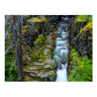 Sunrift Gorge In Glacier National Park, Montana 2 Postcard