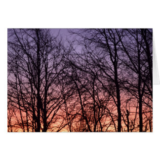 Sunrise and trees card