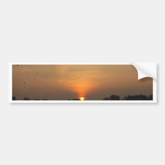 Sunrise at a lake with flying birds. bumper sticker