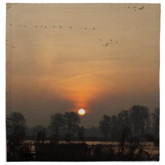Sunrise at a lake with flying birds. napkin