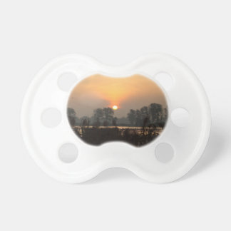 Sunrise at a lake with flying birds. pacifiers