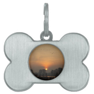 Sunrise at a lake with flying birds. pet tag