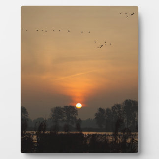 Sunrise at a lake with flying birds. plaque