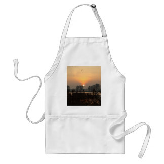 Sunrise at a lake with flying birds. standard apron