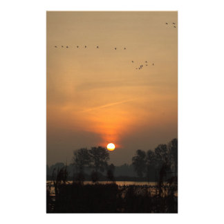 Sunrise at a lake with flying birds. stationery