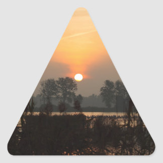 Sunrise at a lake with flying birds. triangle sticker