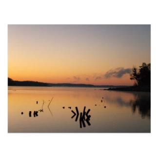 Sunrise at The Lake Postcard