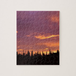 Sunrise Boreal Forest Alaska Puzzles