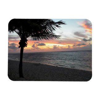Sunrise Coconut, Sunrise Series Magnet