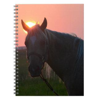 Sunrise Horse Notebook