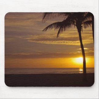 Sunrise in Florida Mousepads
