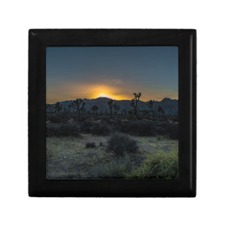 Sunrise Joshua Tree National Park Gift Box