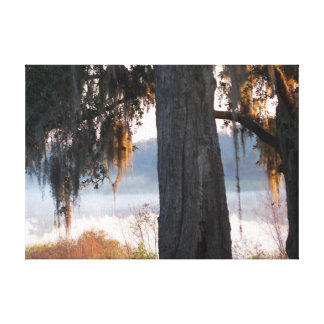 Sunrise on a small misty lake in the South Canvas Print