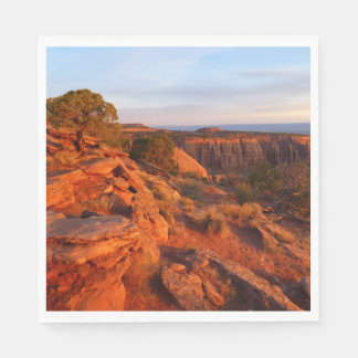 Sunrise on the Grand View Trail at CO Monument Paper Serviettes