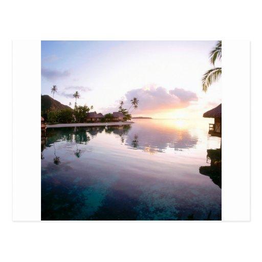 Sunrise Palmilla Coast Cabo San Lucas Mexico Post Card