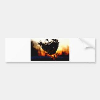 Sunrise Special Bumper Sticker