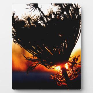 Sunrise Special Plaque