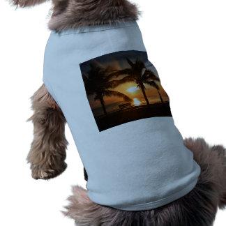 Sunrise Sunset Sun Shirt