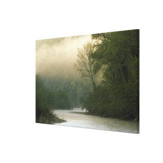 Sunrise through fog viewed from Red Bluff, Stretched Canvas Print