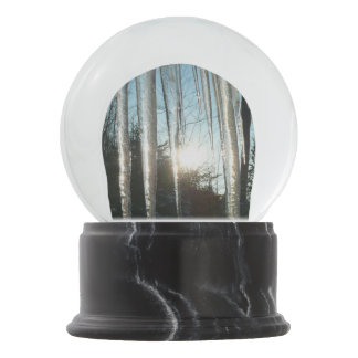Sunrise Through Icicles Winter Nature Photography Snow Globe