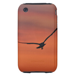 Sunrise with Bird iPhone Case iPhone 3 Tough Cases