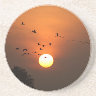 Sunrise with flocks of flying cranes beverage coasters