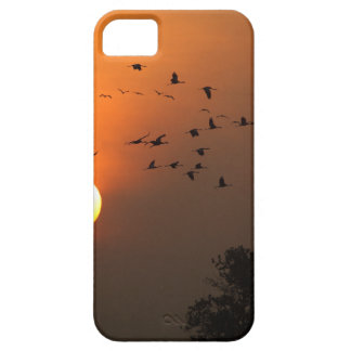 Sunrise with flocks of flying cranes case for the iPhone 5