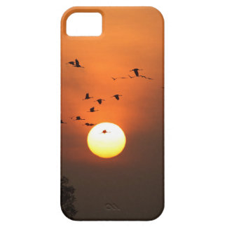 Sunrise with flocks of flying cranes iPhone 5 covers